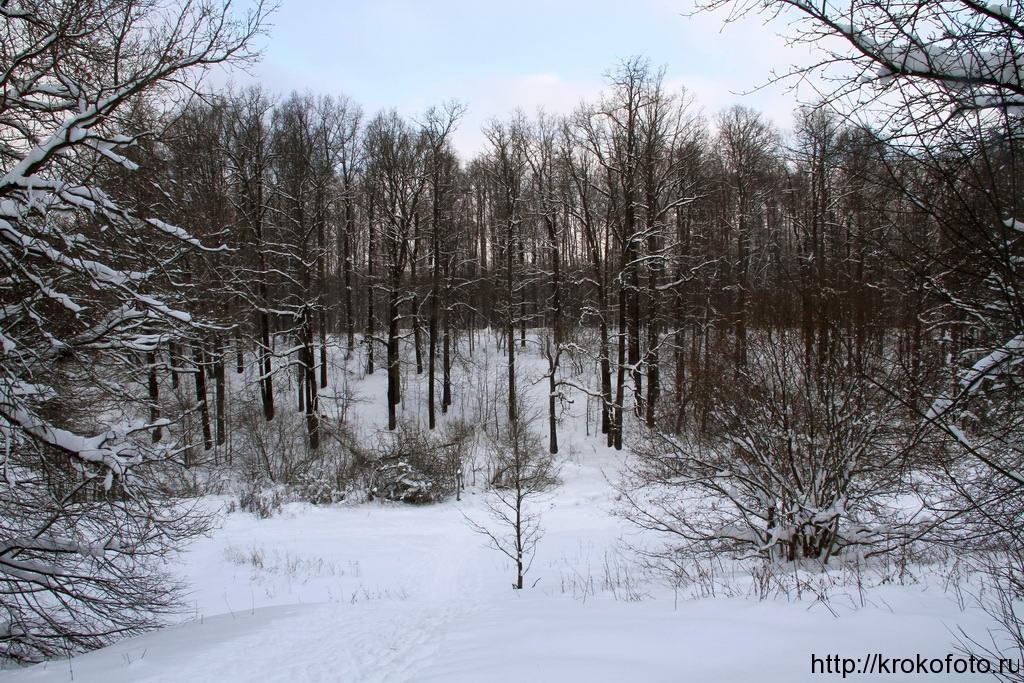 зимние пейзажи 14