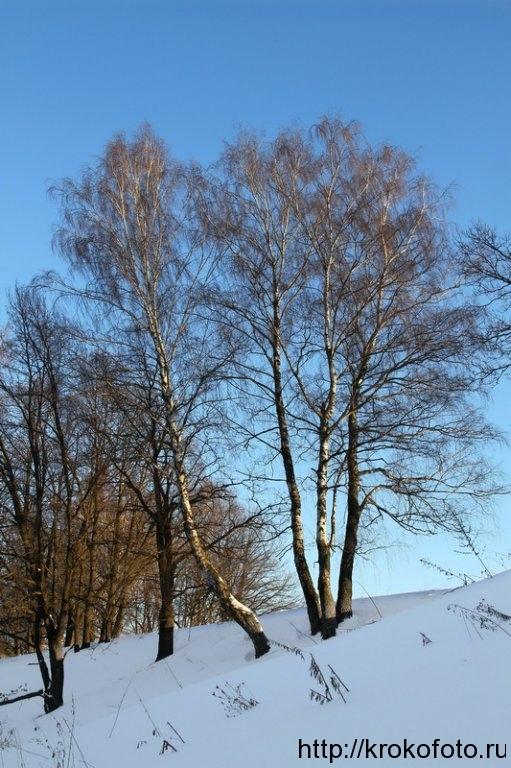 зимние пейзажи 18
