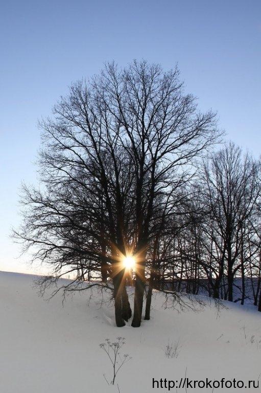 зимние пейзажи 19