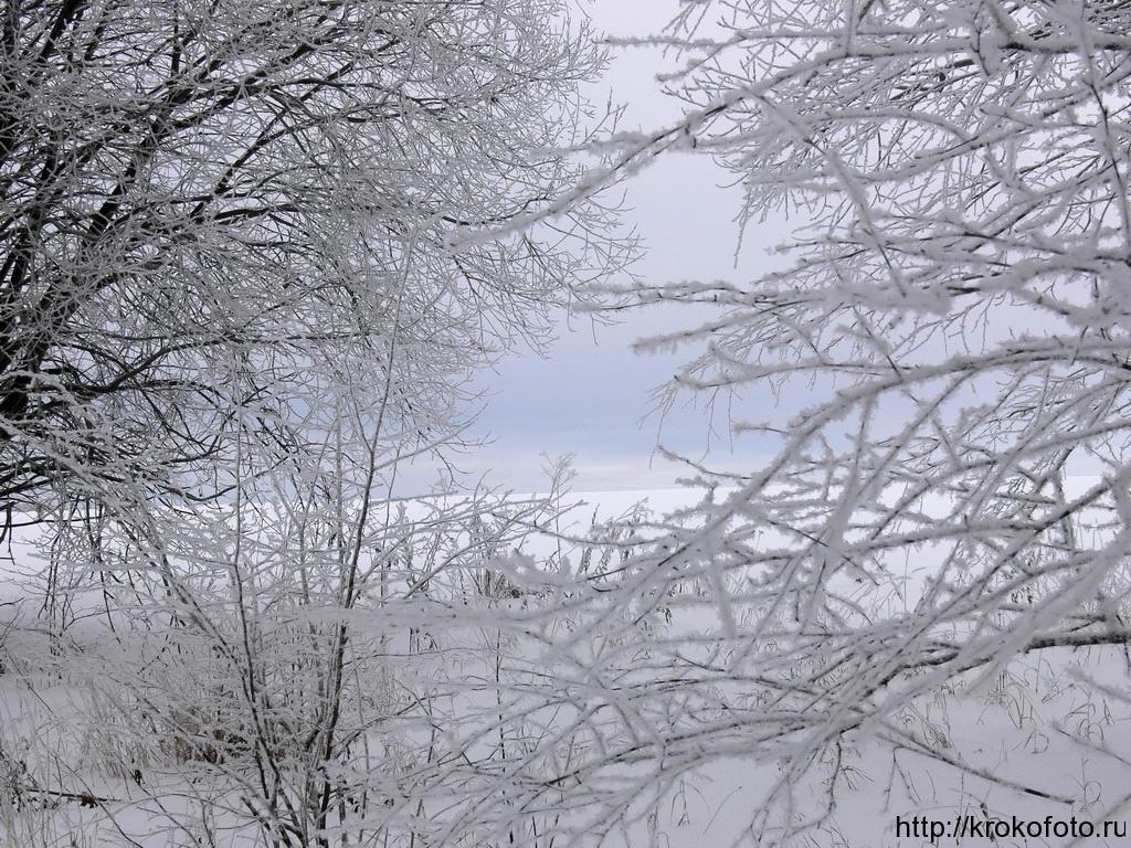 зимние пейзажи 20