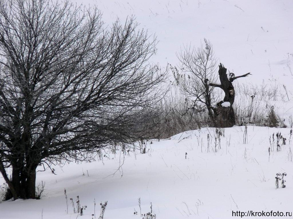 зимние пейзажи 23