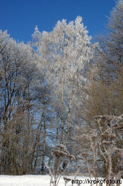 зимние пейзажи 31