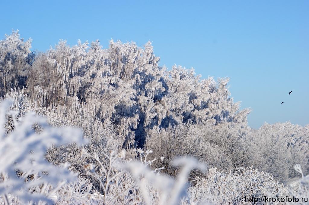зимние пейзажи 34