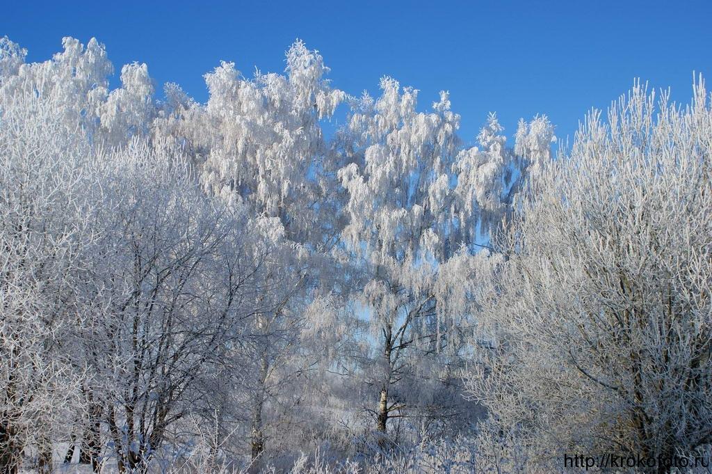 зимние пейзажи 35