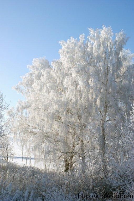 зимние пейзажи 39