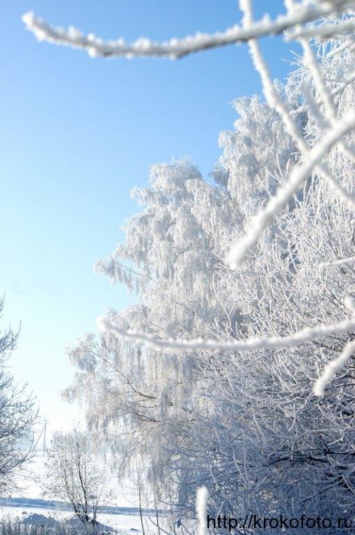 зимние пейзажи 41