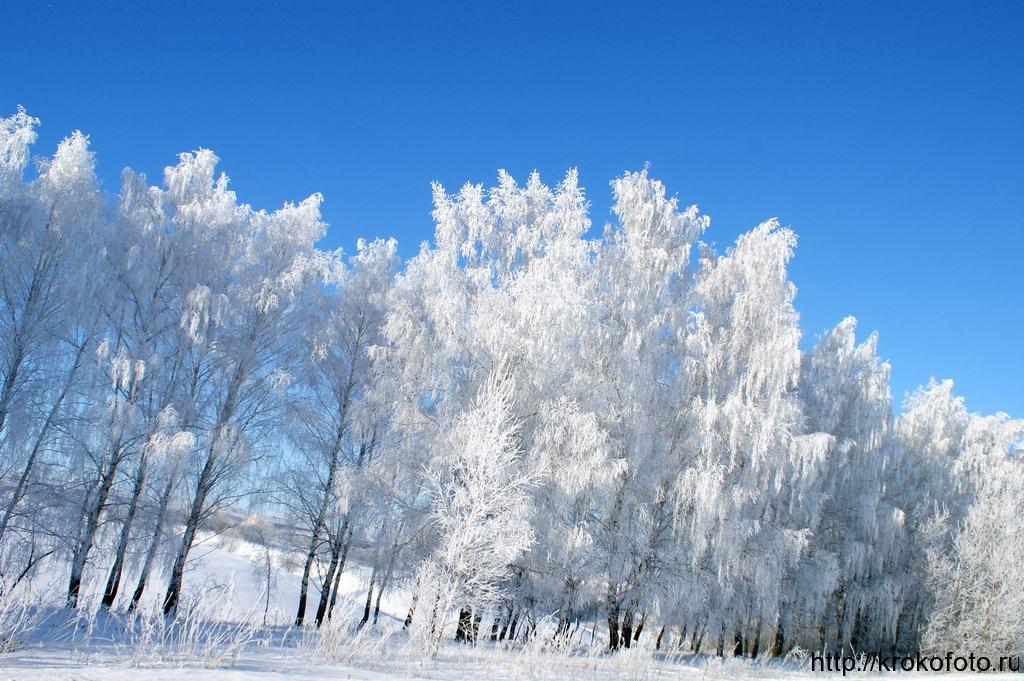 зимние пейзажи 42
