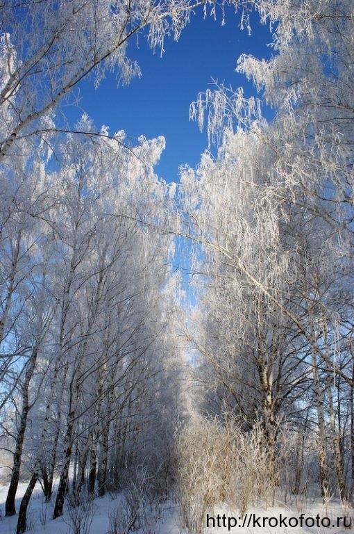 зимние пейзажи 46