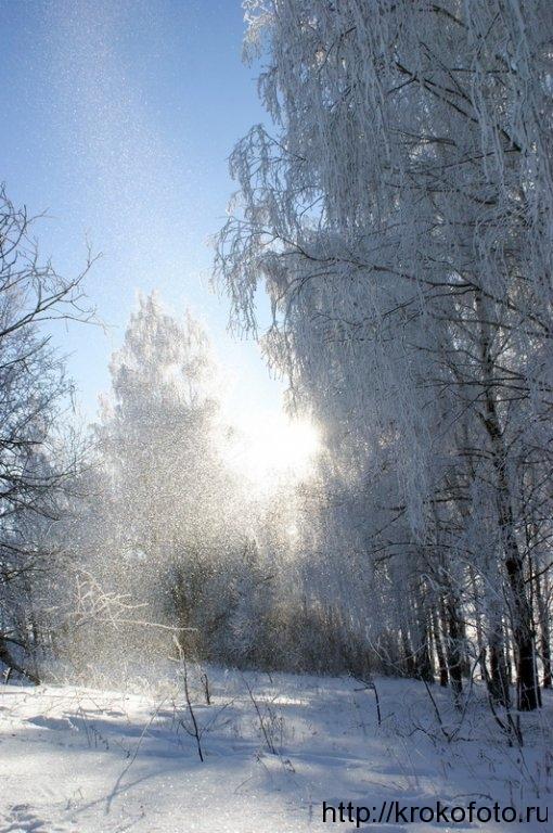 зимние пейзажи 52