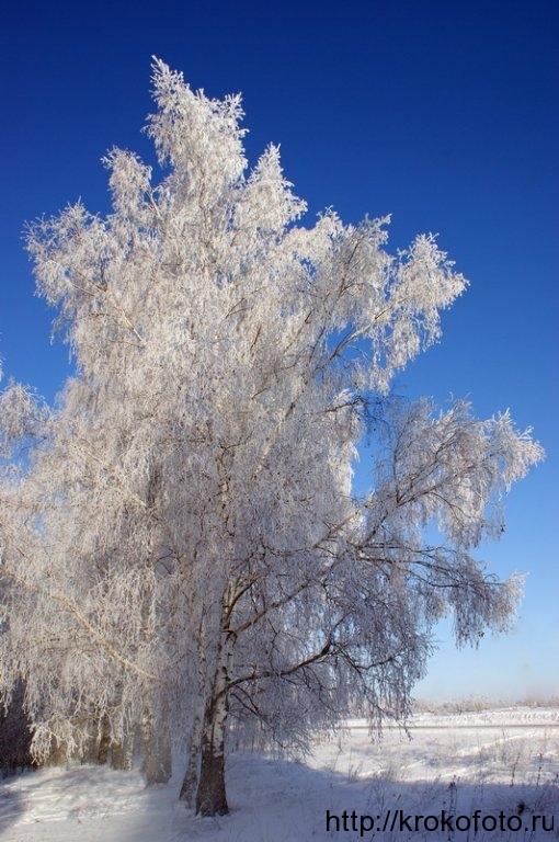 зимние пейзажи 53