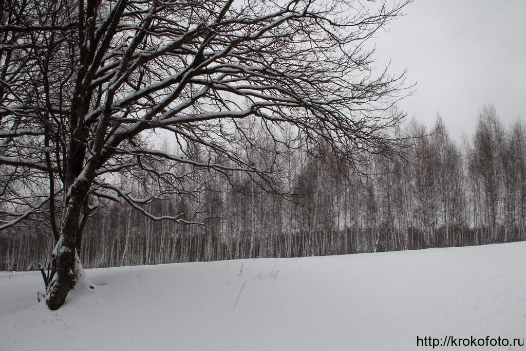 зимние пейзажи 57