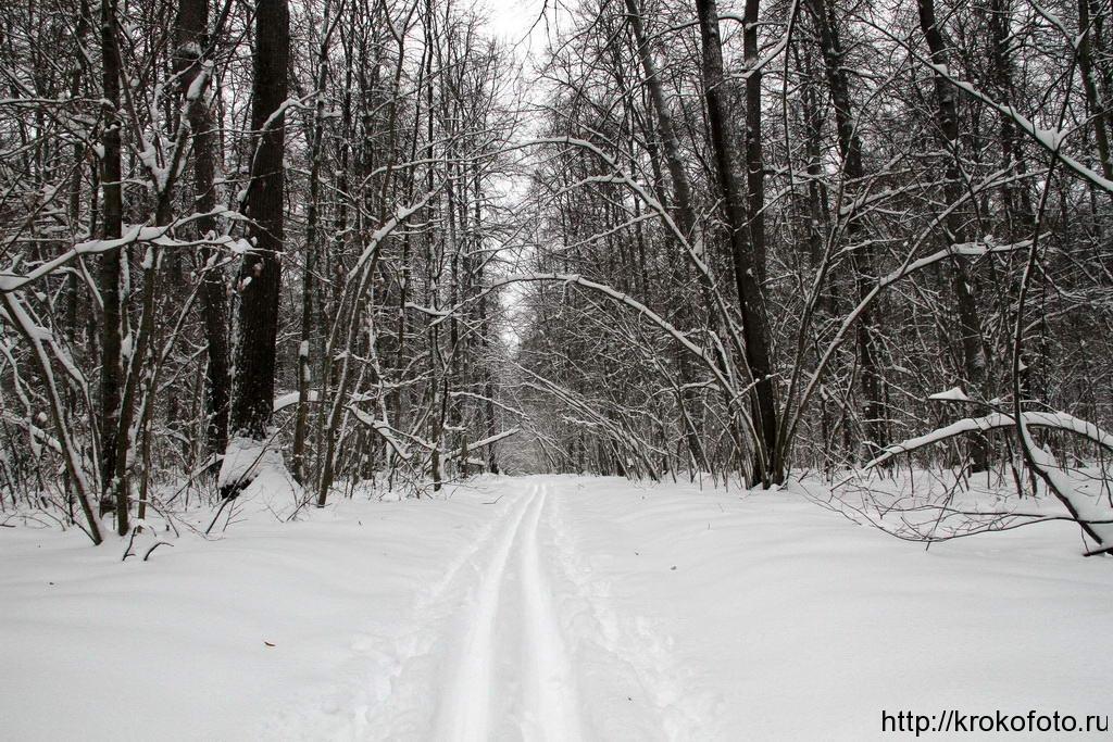 зимние пейзажи 59