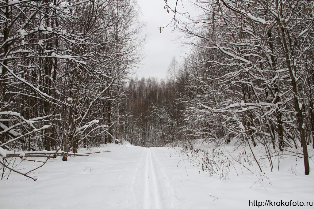 зимние пейзажи 60