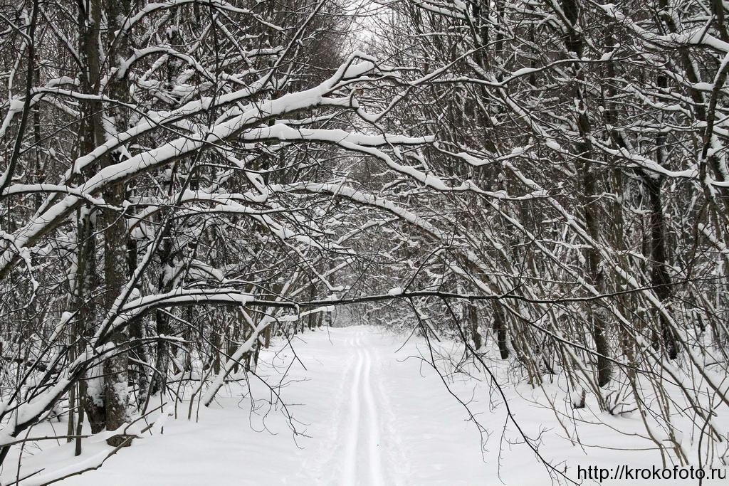 зимние пейзажи 61