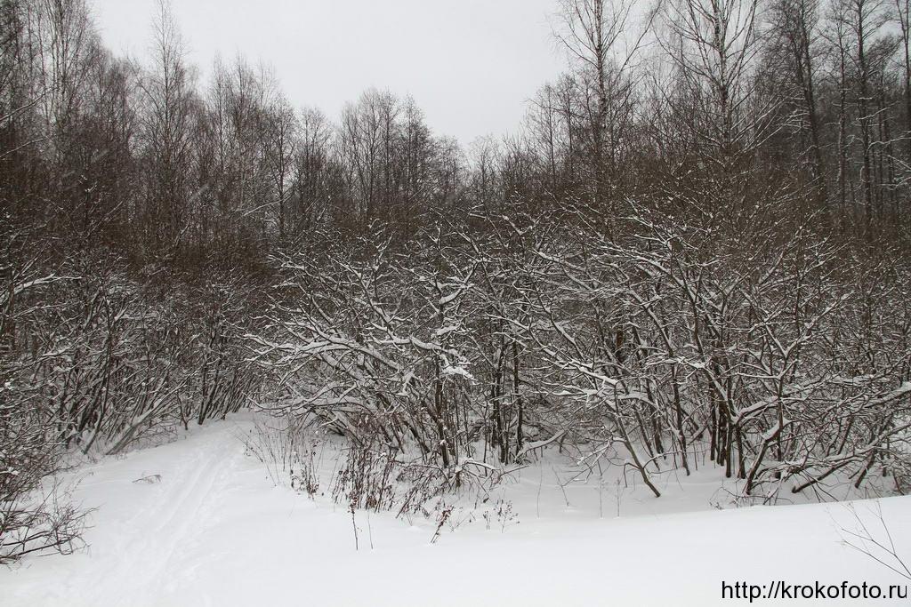 зимние пейзажи 63
