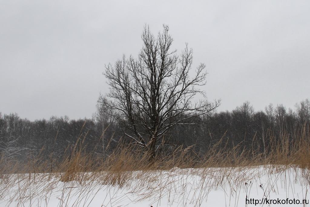 зимние пейзажи 65