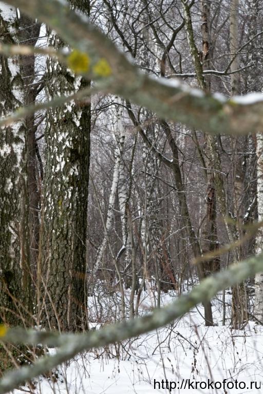 зимние пейзажи 72