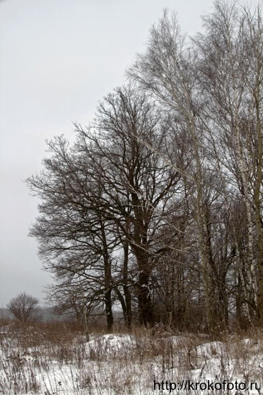 зимние пейзажи 73