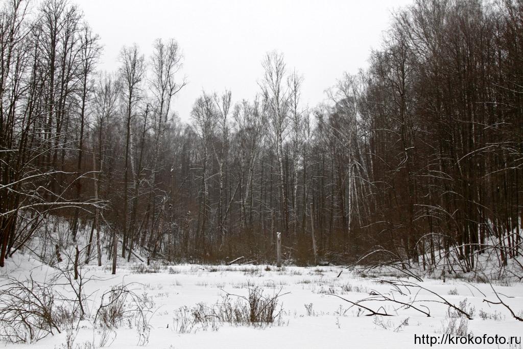 зимние пейзажи 93