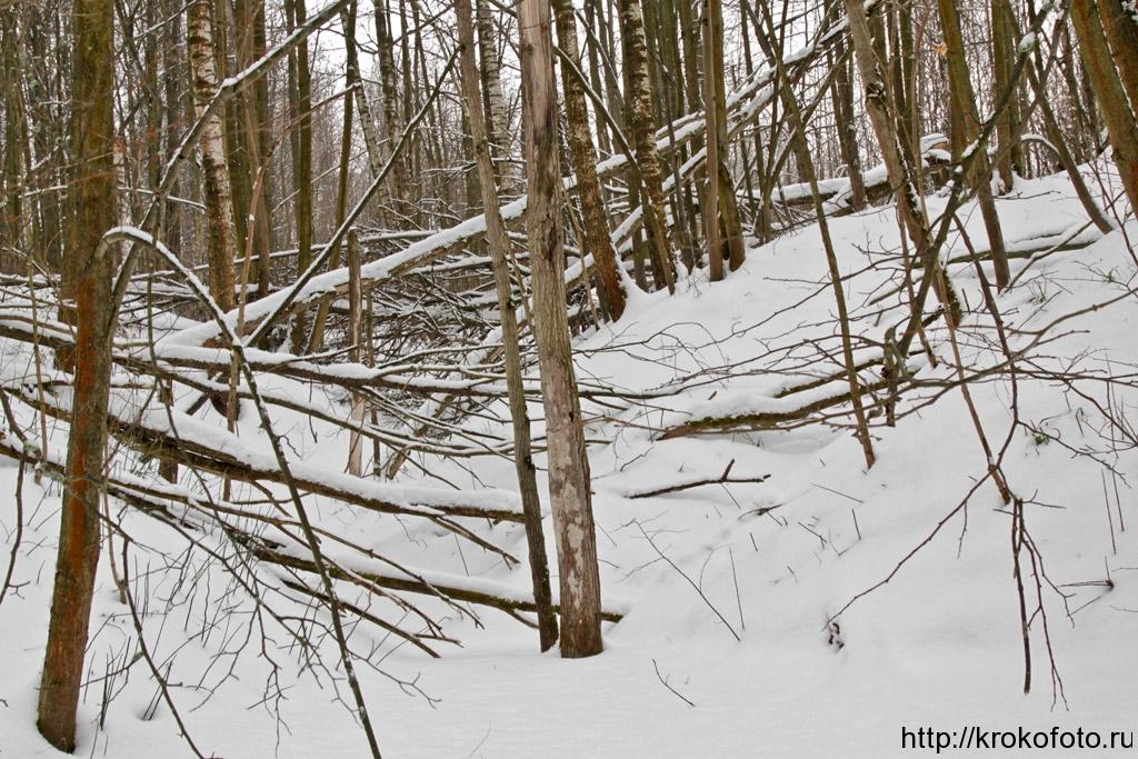 зимние пейзажи 94