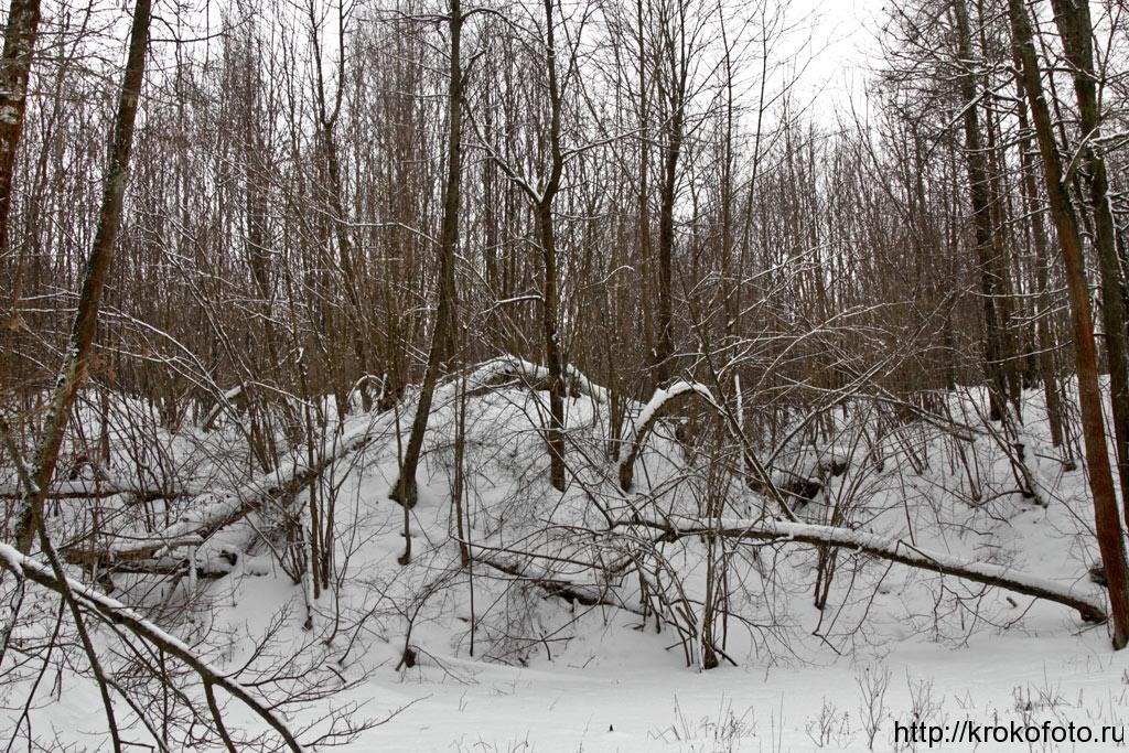 зимние пейзажи 96
