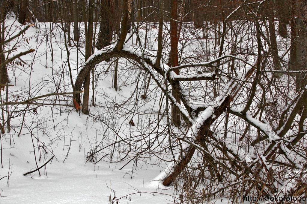зимние пейзажи 97