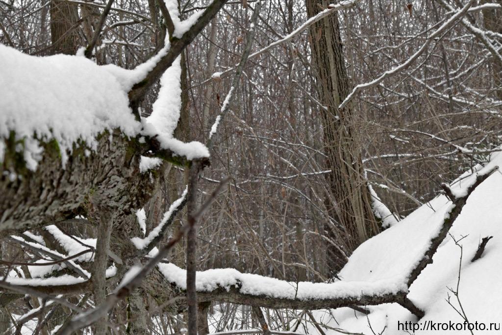 зимние пейзажи 101
