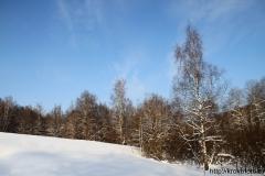 зимние пейзажи 10