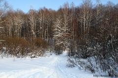зимние пейзажи 11