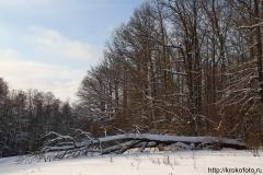 зимние пейзажи 12