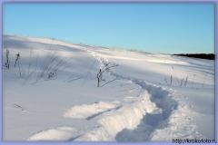зимние пейзажи 16