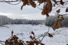 зимние пейзажи 25