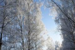 зимние пейзажи 47