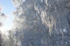 зимние пейзажи 48