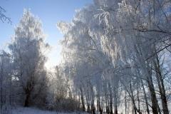зимние пейзажи 49
