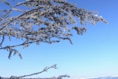 зимние пейзажи 56