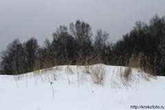 зимние пейзажи 58