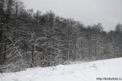 зимние пейзажи 62