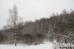 зимние пейзажи 64