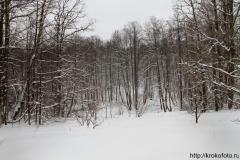 зимние пейзажи 66