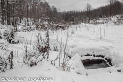 зимние пейзажи 108