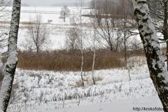 зимние пейзажи 68