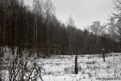 зимние пейзажи 98