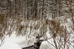 зимние пейзажи 109