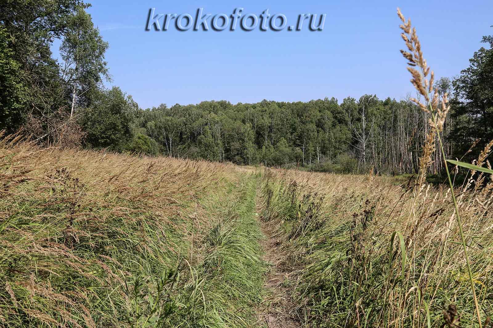 вело прогулка