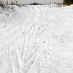 лыжная проулка