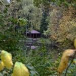 гостиничный комплекс «Богучарово»